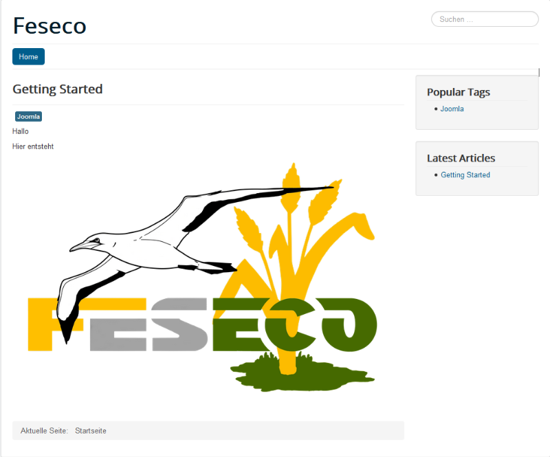 feseco.com.png